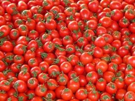 tomatoes-73913_1280-2